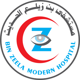 binzeela logo